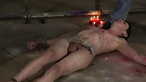 Free young gay bondage porn A Sadistic Trap For..